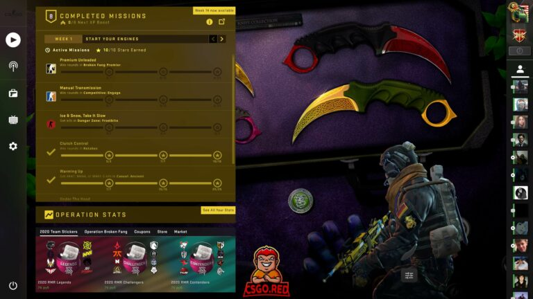 Karambit Knife Collection CSGO Panorama UI Preview